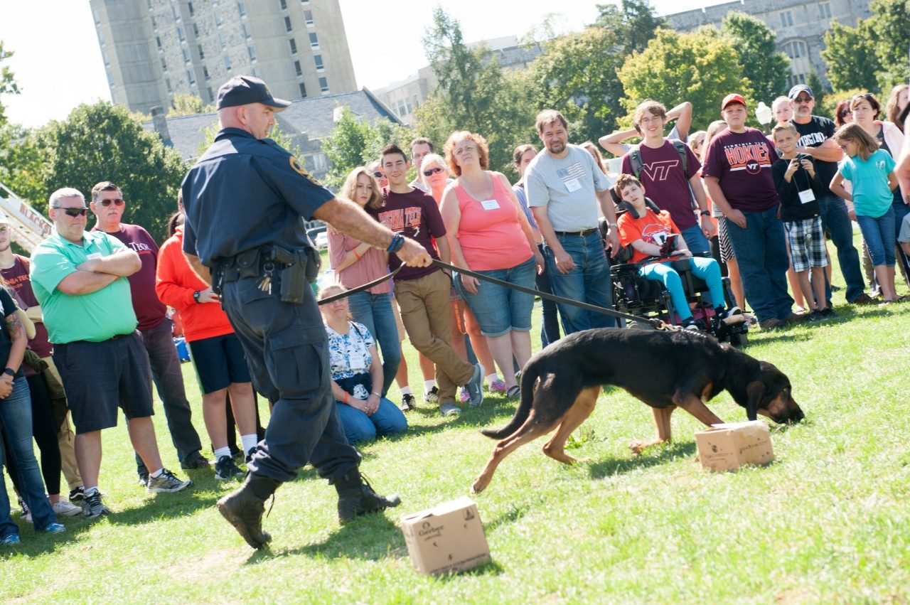 A police dog sniffs the ground, closely followed by his handler.